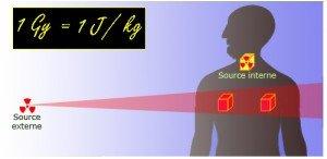 Le brocoli, arme inattendue contre la radioactivité dans Info dose_absorbee-300x146
