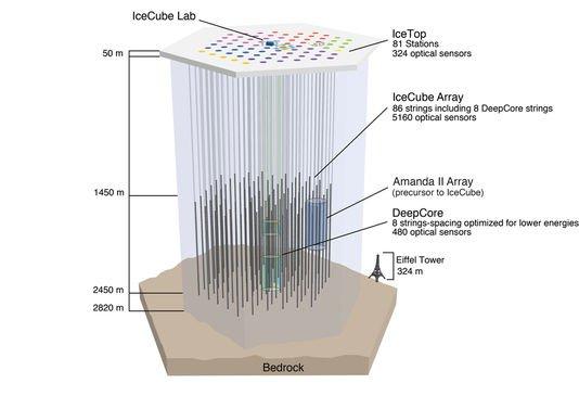 3518749_5_7af0_vue-en-coupe-du-detecteur-de-neutrinos-icecube_0ef3155ce6af01a641384842d991f529